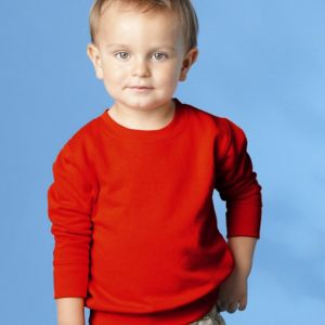 Toddler Fleece Crewnneck Sweatshirt Thumbnail